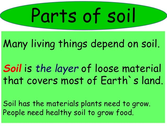 The soil for Things in soil