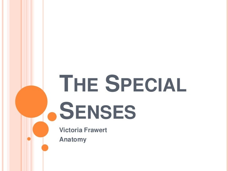 The Special Senses<br />Victoria Frawert<br />Anatomy<br />