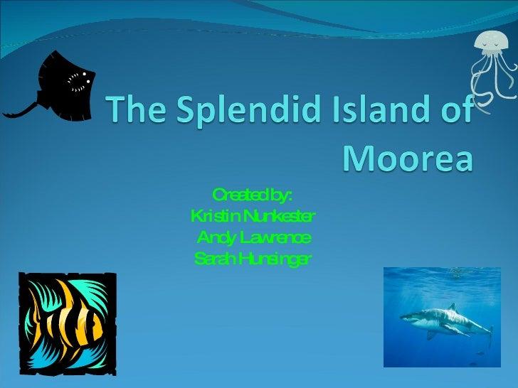 The Splendid Island Of Moorea