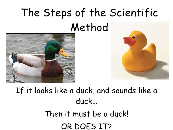The Steps of the Scientific Method If it looks like a duck, and sounds like a duck… Then it must be a duck! OR DOES IT?