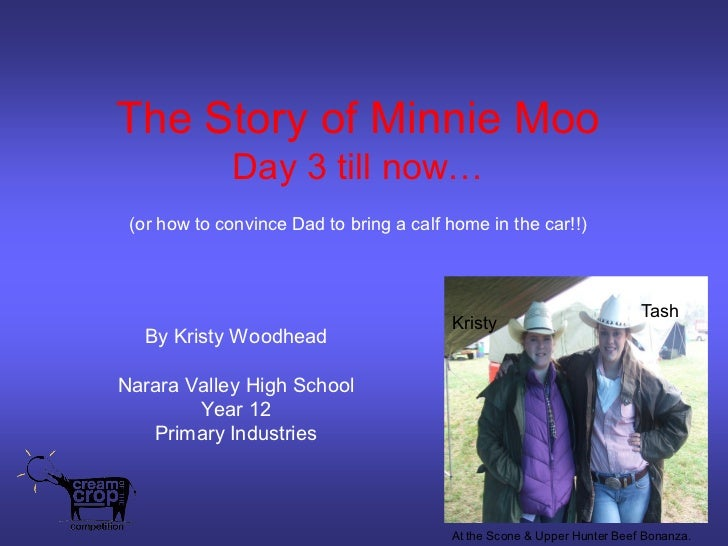 The Story of Minnie Moo              Day 3 till now… (or how to convince Dad to bring a calf home in the car!!)           ...