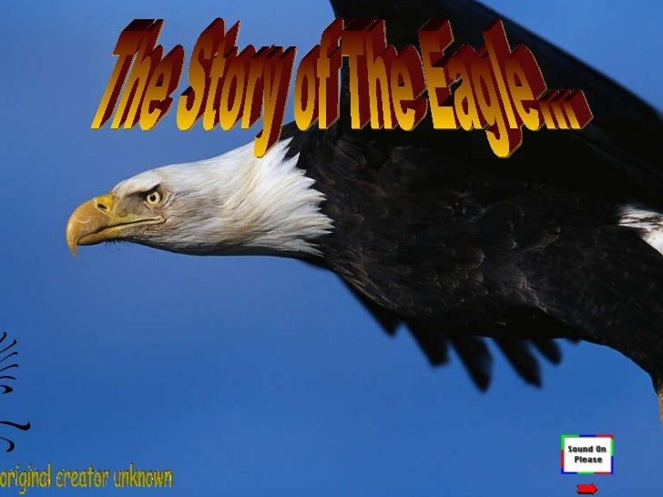The story of the eagle a true motivational event