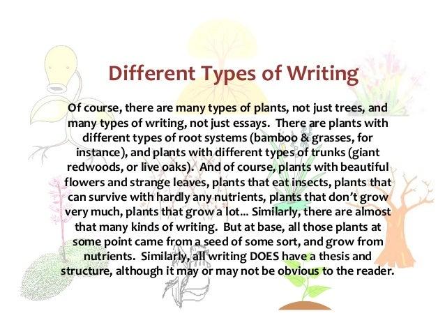 Essay on usefulness of trees