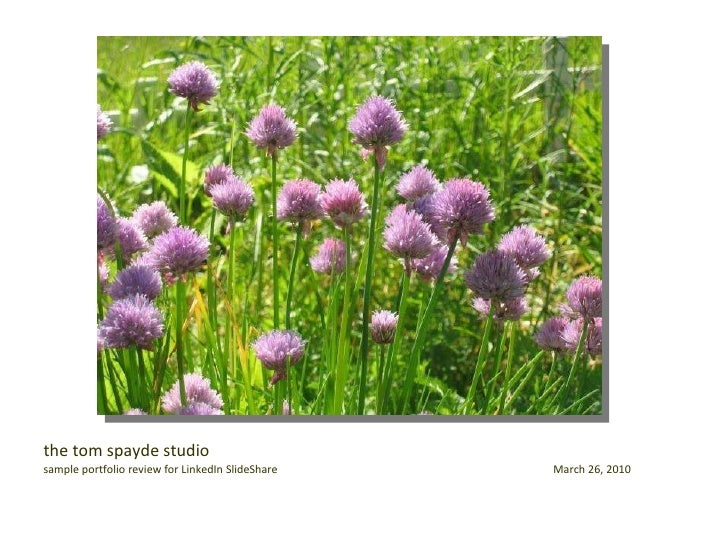 The Tom Spayde Studio For Linked In Slide Share