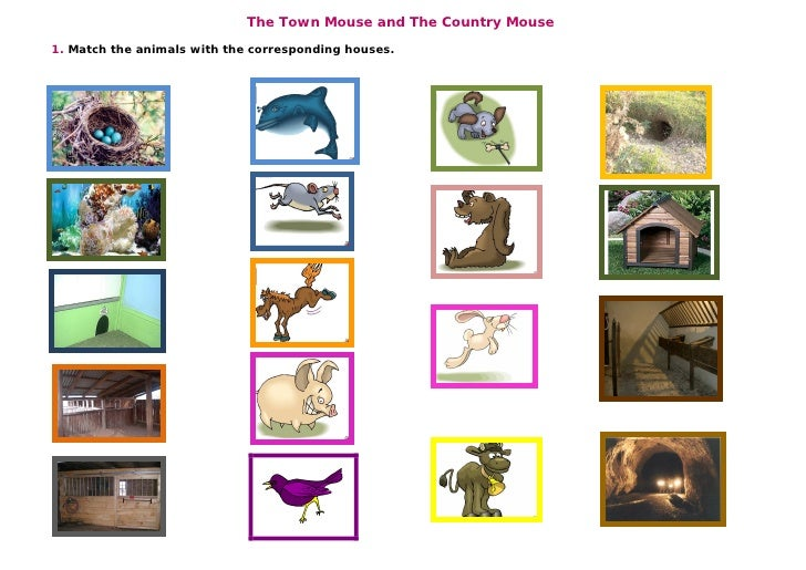 The Town Mouse and The Country Mouse 1. Match the animals with the corresponding houses.