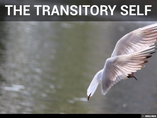 The Transitory Self