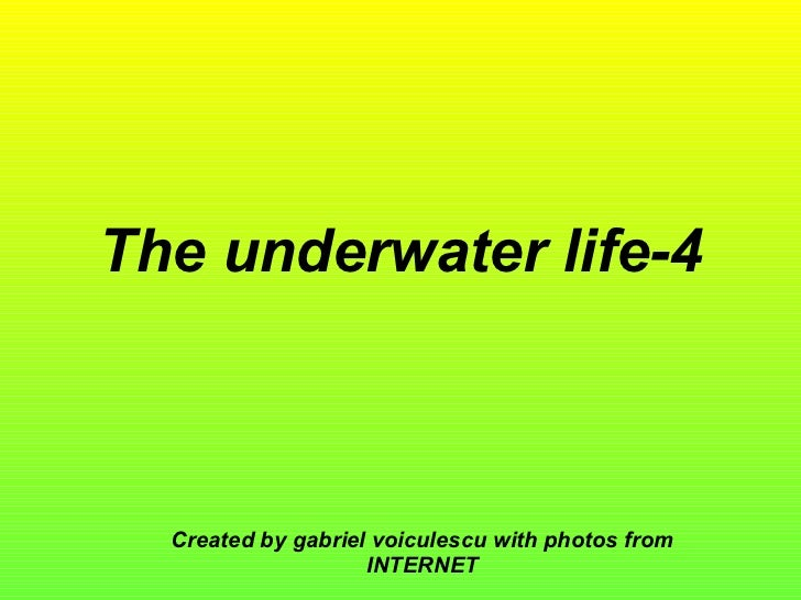 The underwater life-4 Created by gabriel voiculescu with photos from INTERNET
