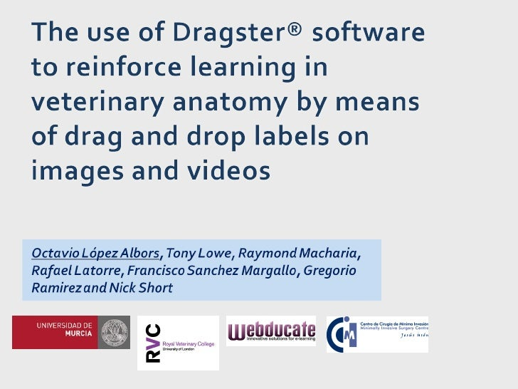 The use of dragster® software to reinforce learning for webducate
