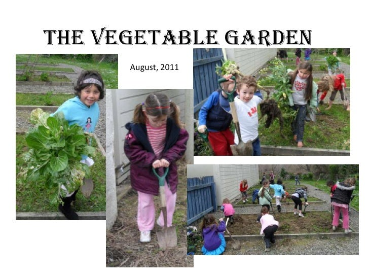 The Vegetable garden<br />August, 2011<br />