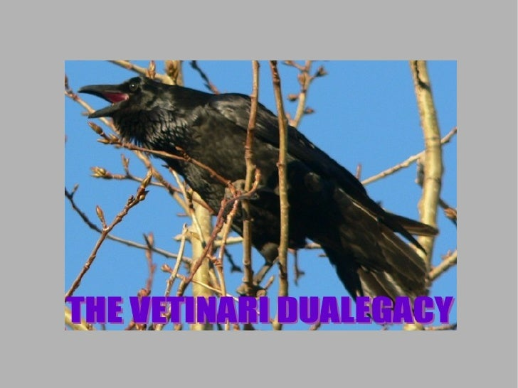 The Vetinari Dualegacy Chapter 12 75