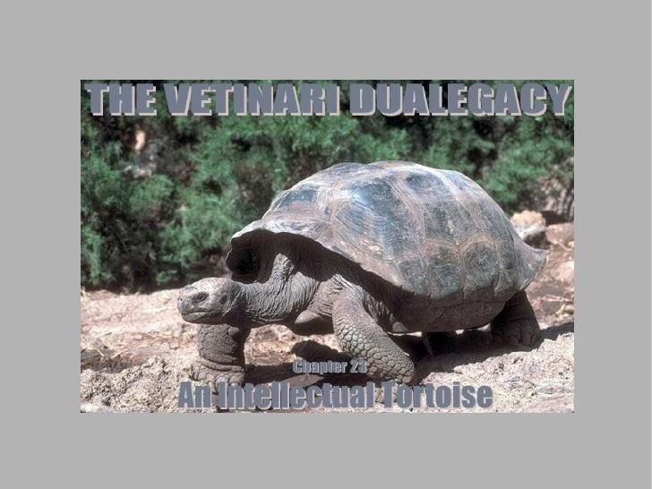 Welcome back to the Vetinari Dualegacy! This is Chapter 23: An Intellectual Tortoise!  Last time, Cass and Gil went on a s...