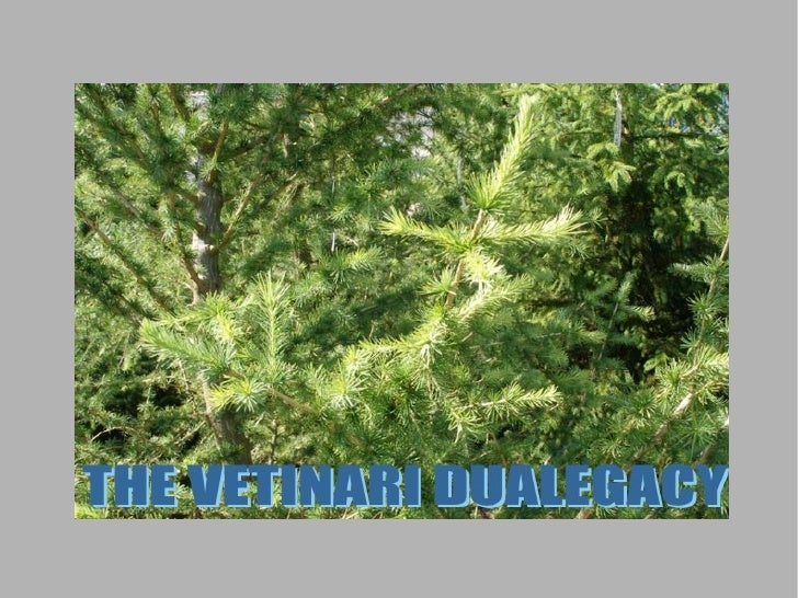 The Vetinari Dualegacy Chapter 7 5