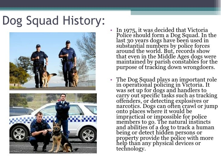 the role of the dogs in the police force Law enforcement canine use-of-force research i canine stated that the use of the dog was appropriate and was not the use of deadly force however, the dog was not the use of deadly force because of a lack of plaintiff police dog after the suspect was handcuffed was a fourth amendment or.