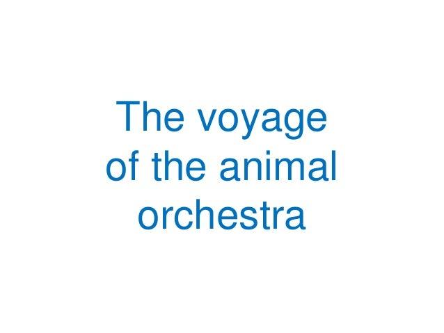 The voyageof the animalorchestra