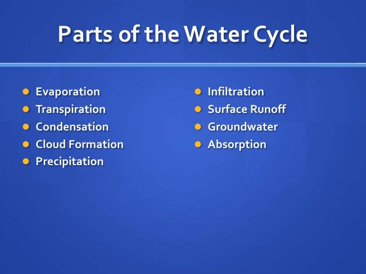 Transpiration Water Cycle Parts of The Water Cycle