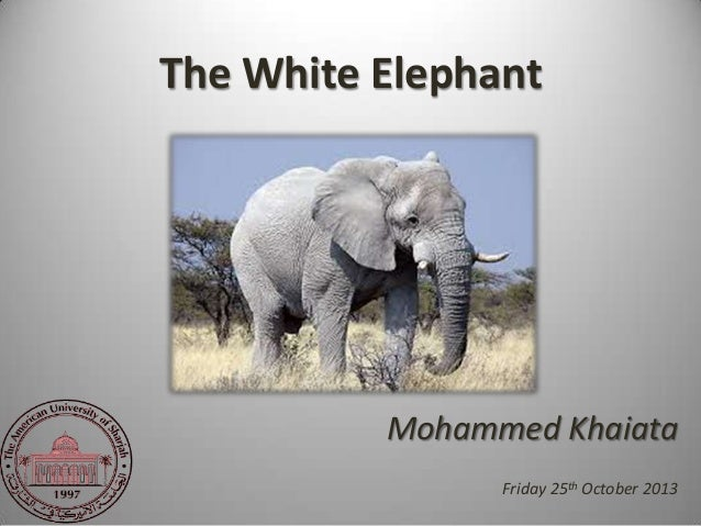 The White Elephant - Portfolio Selection and Alignment