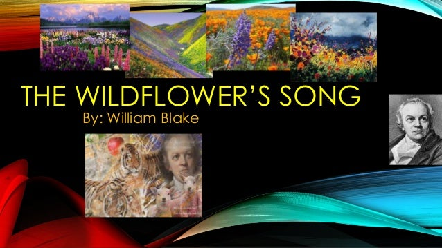 THE WILDFLOWER'S SONG By: William Blake