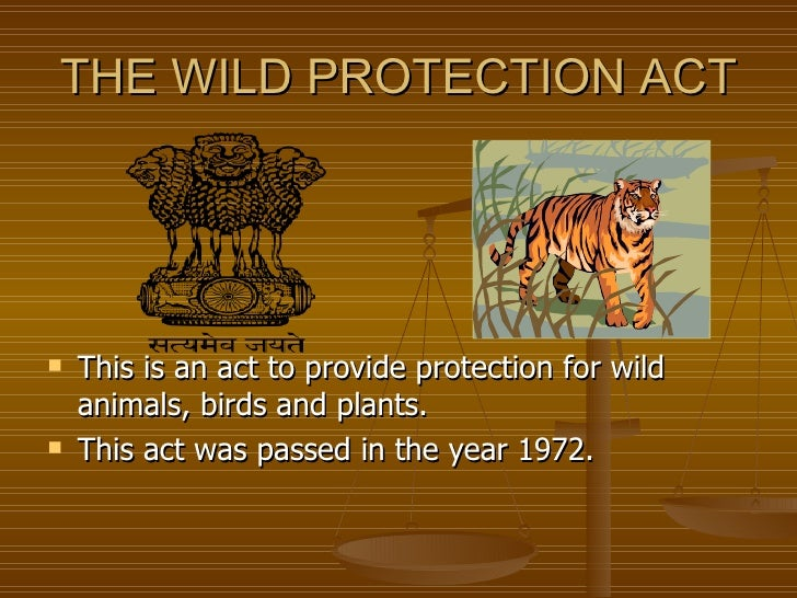 ... of species protected under the Indian Wildlife (Protection) Act, 1972