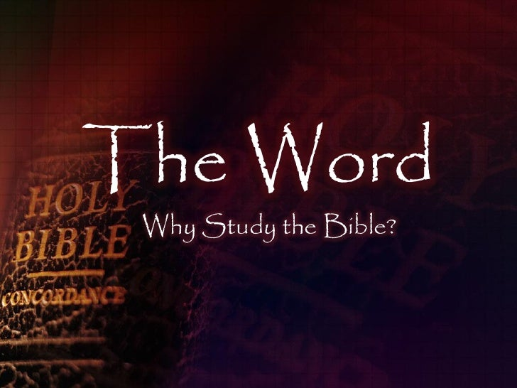 The Word  Why Study the Bible?