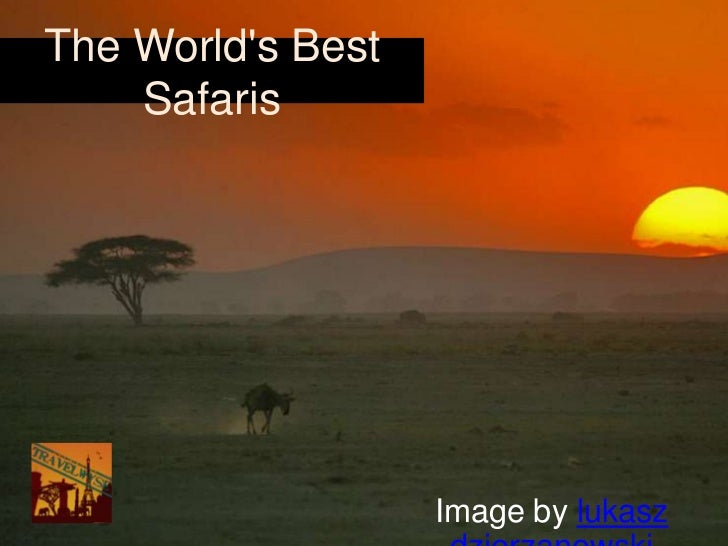 The Worlds Best    Safaris                   Image by lukasz
