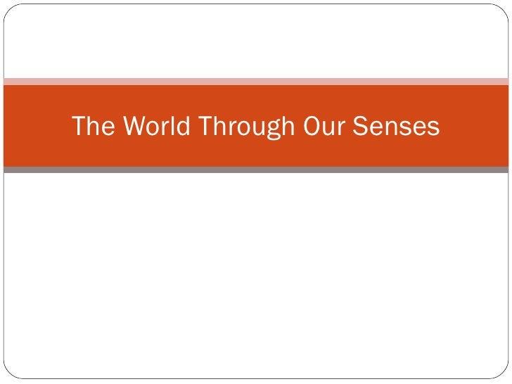 The World Through Our Senses