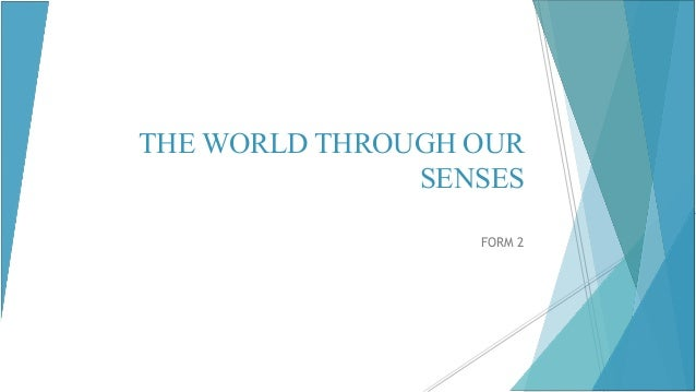 The world through our senses