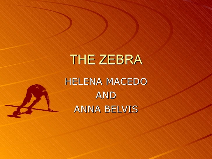 THE ZEBRA HELENA MACEDO AND ANNA BELVIS