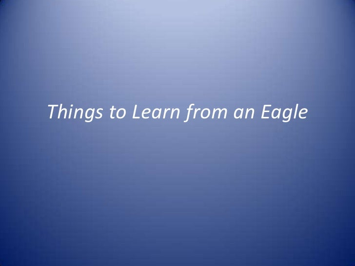 Things to Learn from an Eagle<br />