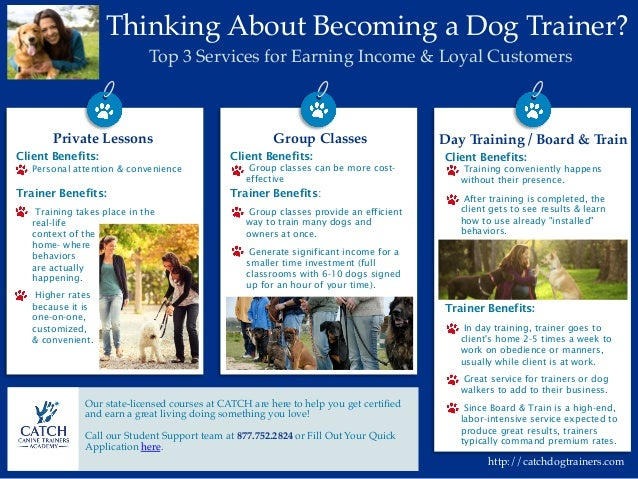 Benefits of being a dog trainer