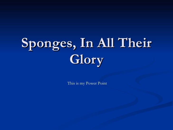 Sponges, In All Their Glory This is my Power Point