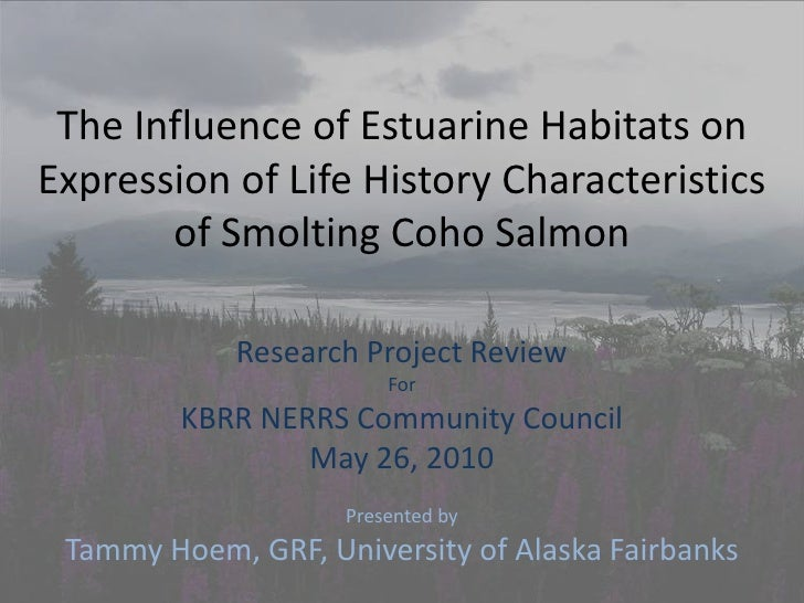 The Influence of Estuarine Habitats on Expression of Life History Characteristics of Smolting Coho Salmon<br />Research P...