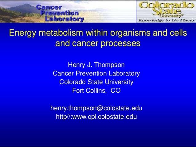 CancerPreventionLaboratoryHenry J. ThompsonCancer Prevention LaboratoryColorado State UniversityFort Collins, COhenry.thom...