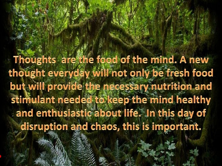 Thoughts  are the food of the mind. A new thought everyday will not only be fresh food but will provide the necessary nutr...