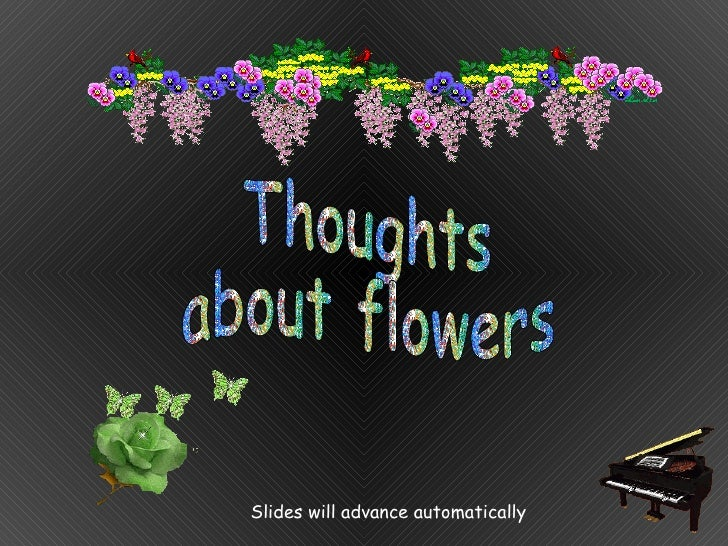 Thoughts  about flowers Slides will advance automatically