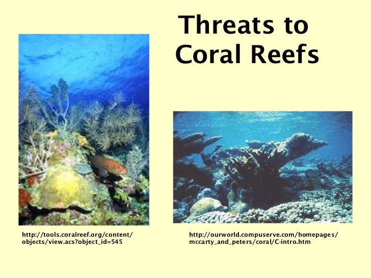 http://ourworld.compuserve.com/homepages/ mccarty_and_peters/coral/C-intro.htm Threats to  Coral Reefs http://tools.coralr...