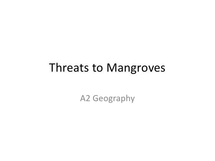 Threats To Mangroves