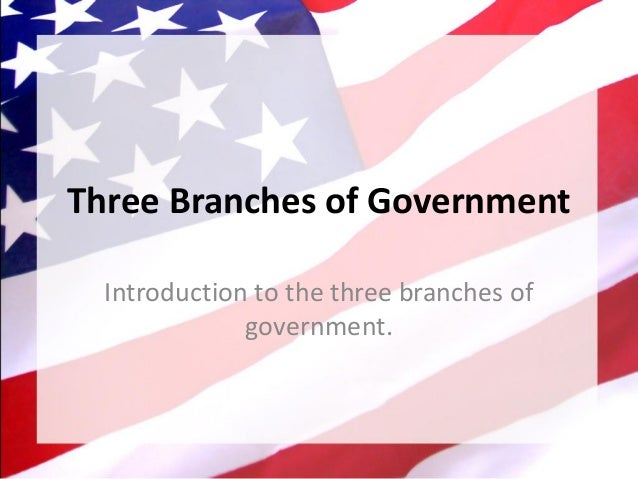 Three Branches of Government Introduction to the three branches of government.