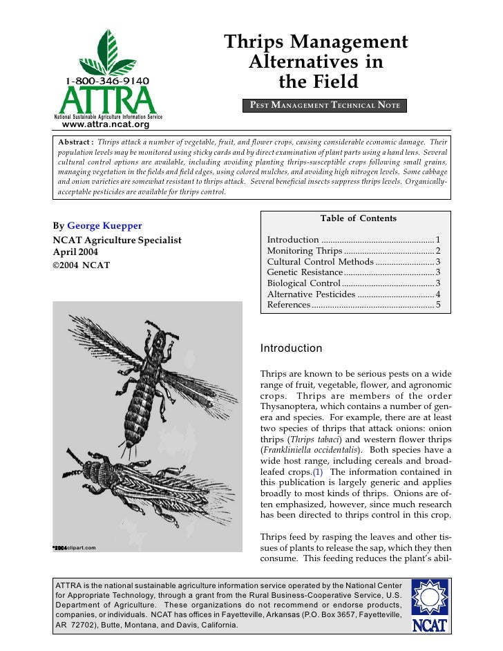 Thrips Management Alternatives in the Field