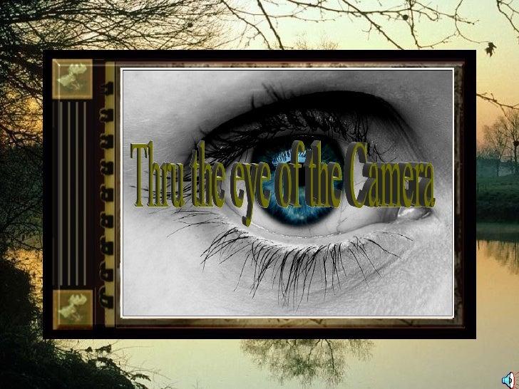 Thru the eye of the Camera