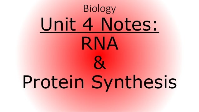 biology unit 4