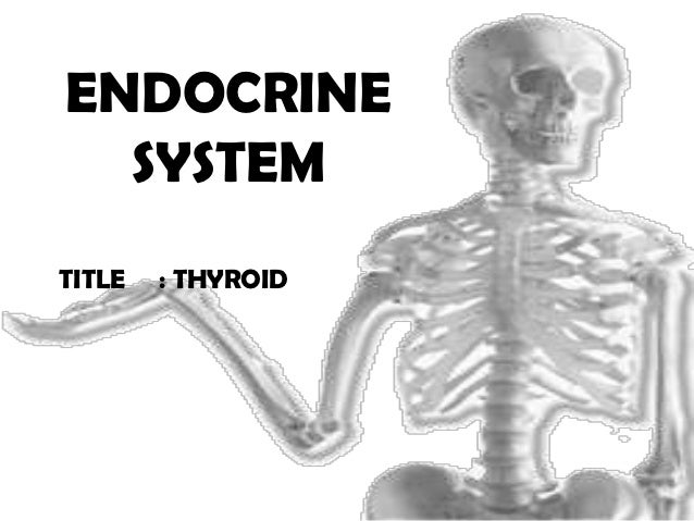 ENDOCRINE  SYSTEMTITLE   : THYROID