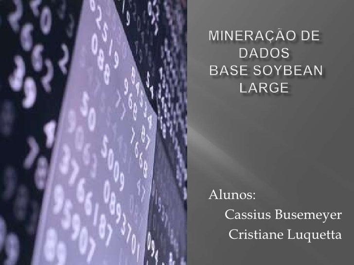 Mineração de DadosBase Soybean Large<br />Alunos: <br />Cassius Busemeyer<br />Cristiane Luquetta<br />