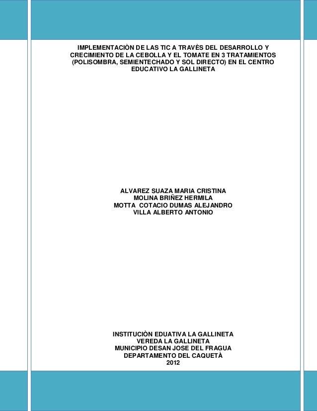 IMPLEMENTACIÒN DE LAS TIC A TRAVÈS DEL DESARROLLO YCRECIMIENTO DE LA CEBOLLA Y EL TOMATE EN 3 TRATAMIENTOS(POLISOMBRA, SEM...