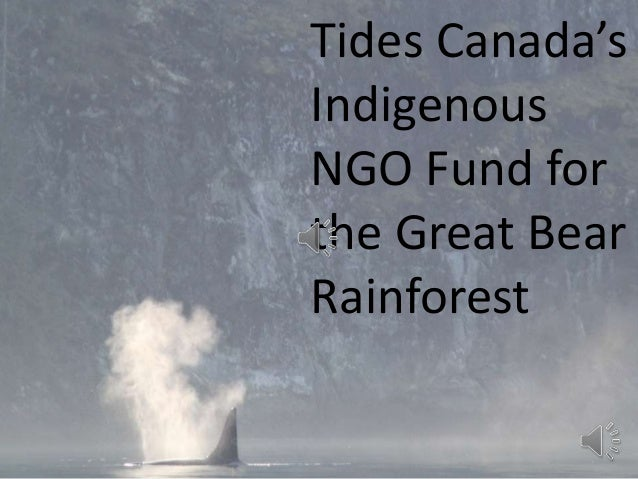 Tides Canada's Indigenous NGO Fund for the Great Bear Rainforest