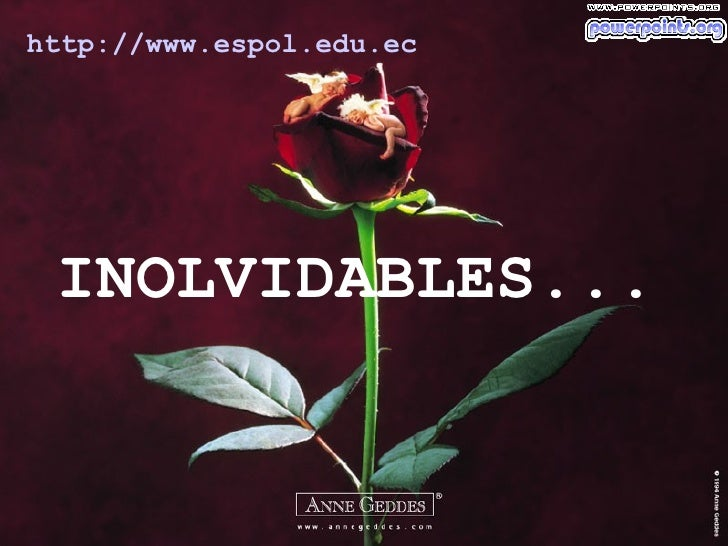 INOLVIDABLES... http :// www.espol.edu.ec