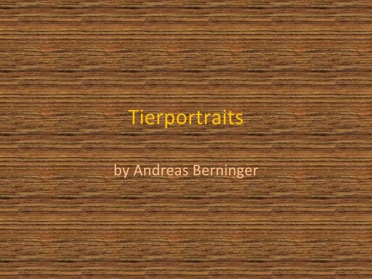 Tierportraits Von Andreas Berninger
