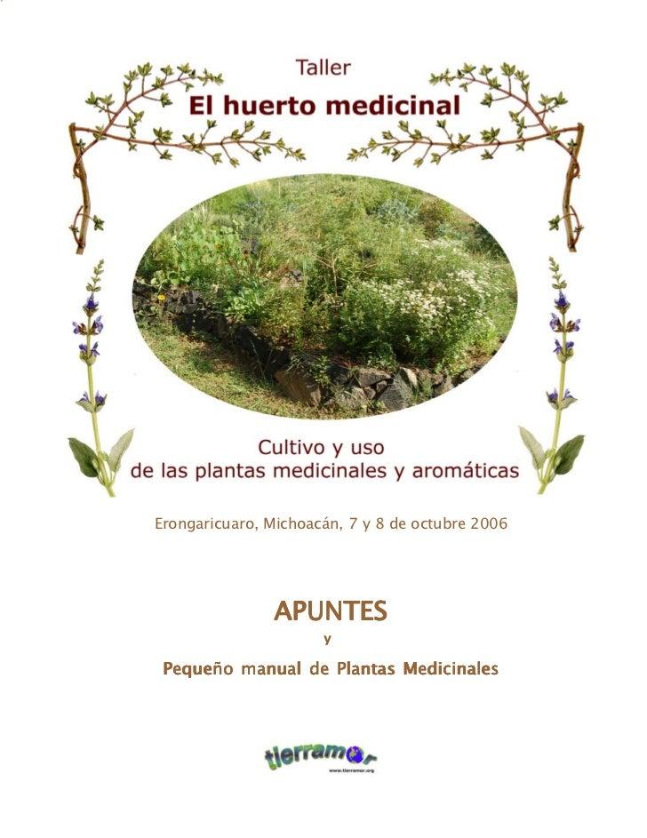 Tierramor   el huerto medicinal