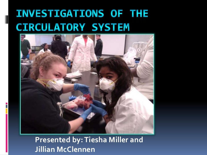 Investigations of the Circulatory System<br />Presented by: Tiesha Miller and Jillian McClennen<br />