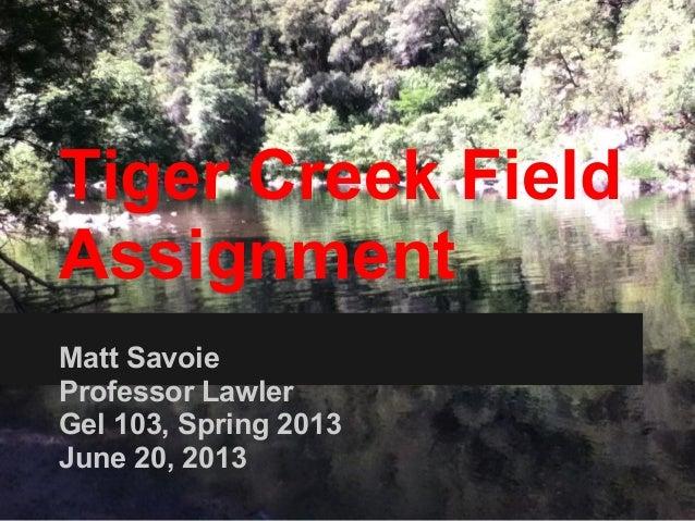 Tiger creek field assignment 3