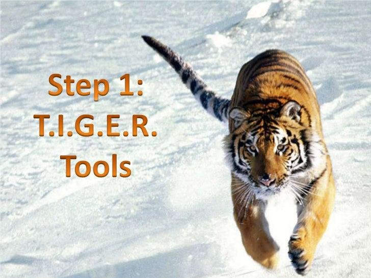 Step 1: T.I.G.E.R. <br />Tools<br />